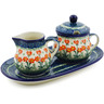 10-inch Stoneware Sugar and Creamer Set - Polmedia Polish Pottery H0013B