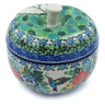 5-inch Stoneware Apple Shaped Jar - Polmedia Polish Pottery H6882H