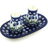 5-inch Stoneware Salt and Pepper Set - Polmedia Polish Pottery H9394G