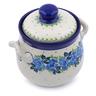 6-inch Stoneware Jar with Lid and Handles - Polmedia Polish Pottery H1197J