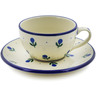 7 oz Stoneware Cup with Saucer - Polmedia Polish Pottery H9211A